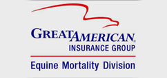 greatamericaninsurancemini