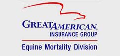 greatamericaninsurancemini
