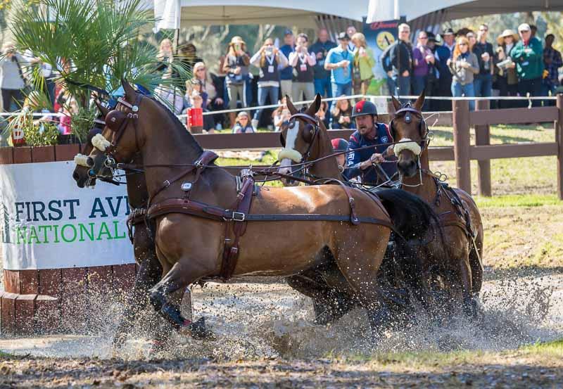 Strap In for the Horse Network Marathon at Live Oak International