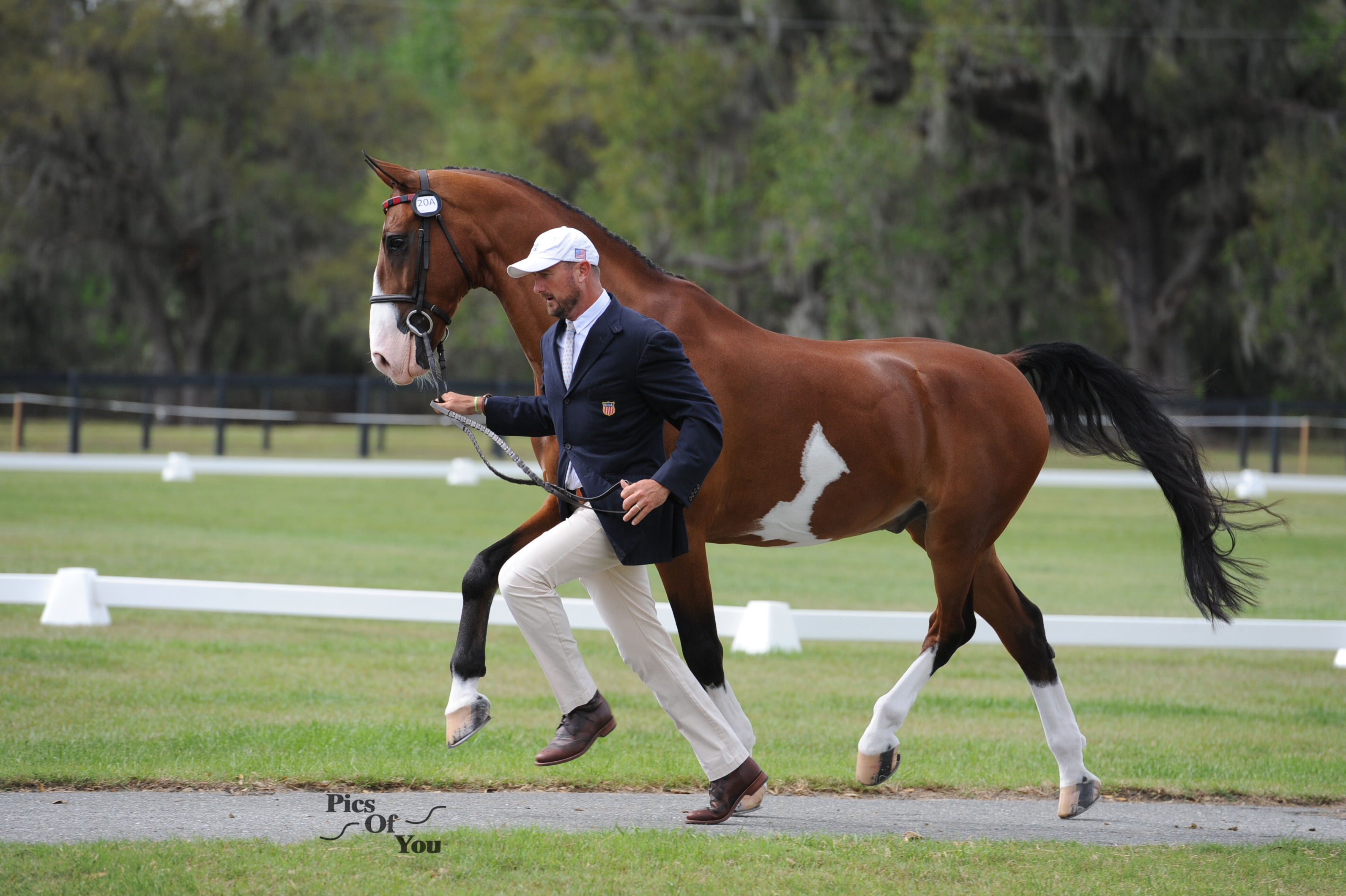 Drivers and Riders Begin Quest for Four USEF Driving Championships And Chance to Qualify for the Longines FEI Show Jumping World Cup Final At Live Oak International