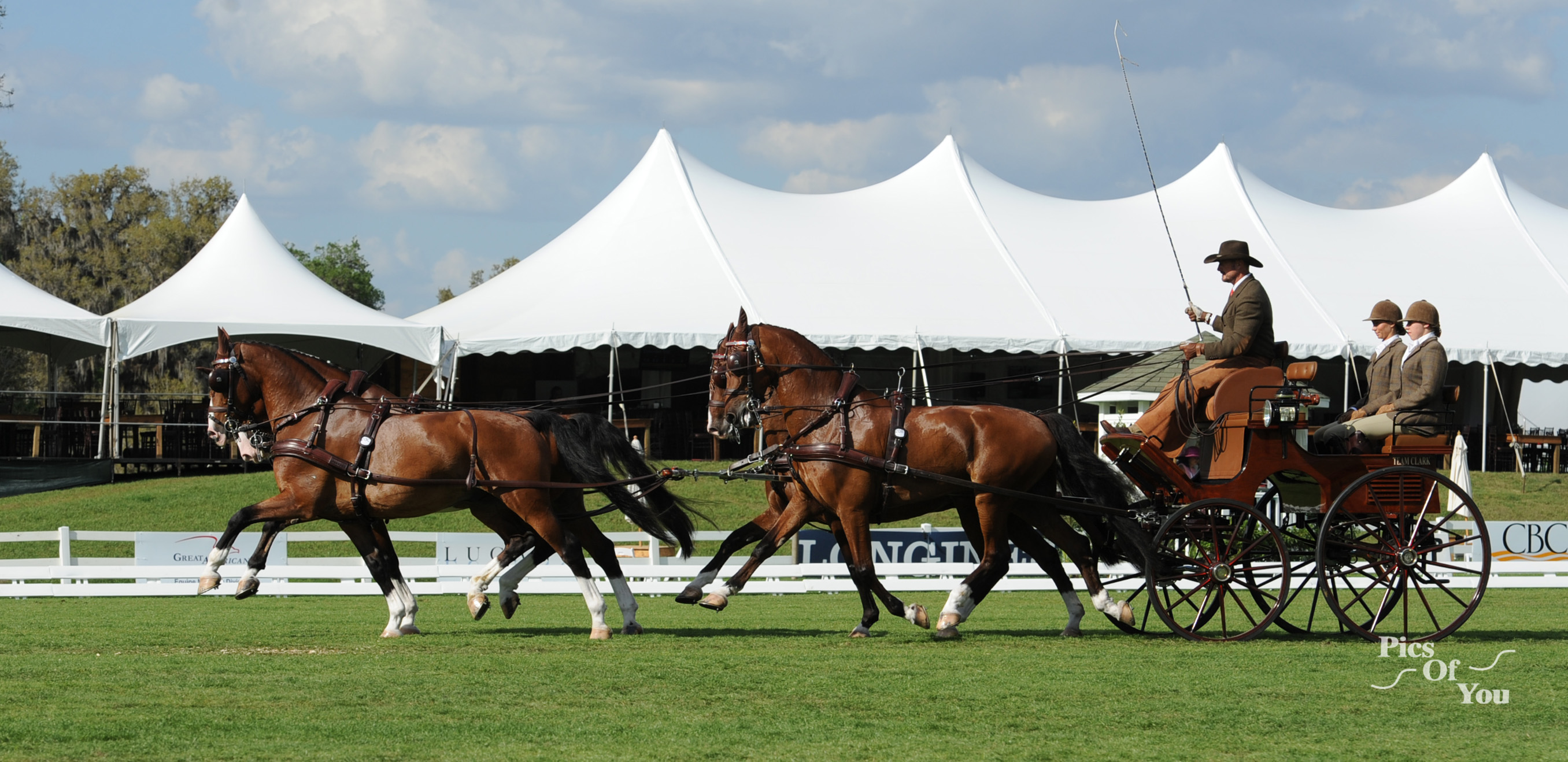 Weber, Miller, Morgan and Whaley Lead USEF Driving Championships Following Dressage at Live Oak International