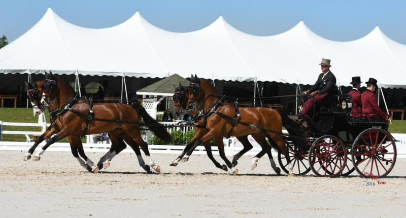 Weber and Adcox Lead USEF Combined Driving National Championships After Dressage at Live Oak International