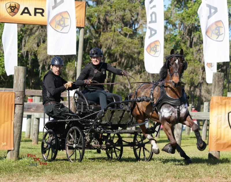 Adcox, Keeler, Thompson and Whaley Lead Inaugural Intermediate Combined Driving Championships After Marathon